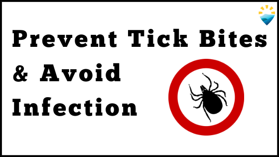 Tips to Prevent Ticks & Avoid Infection